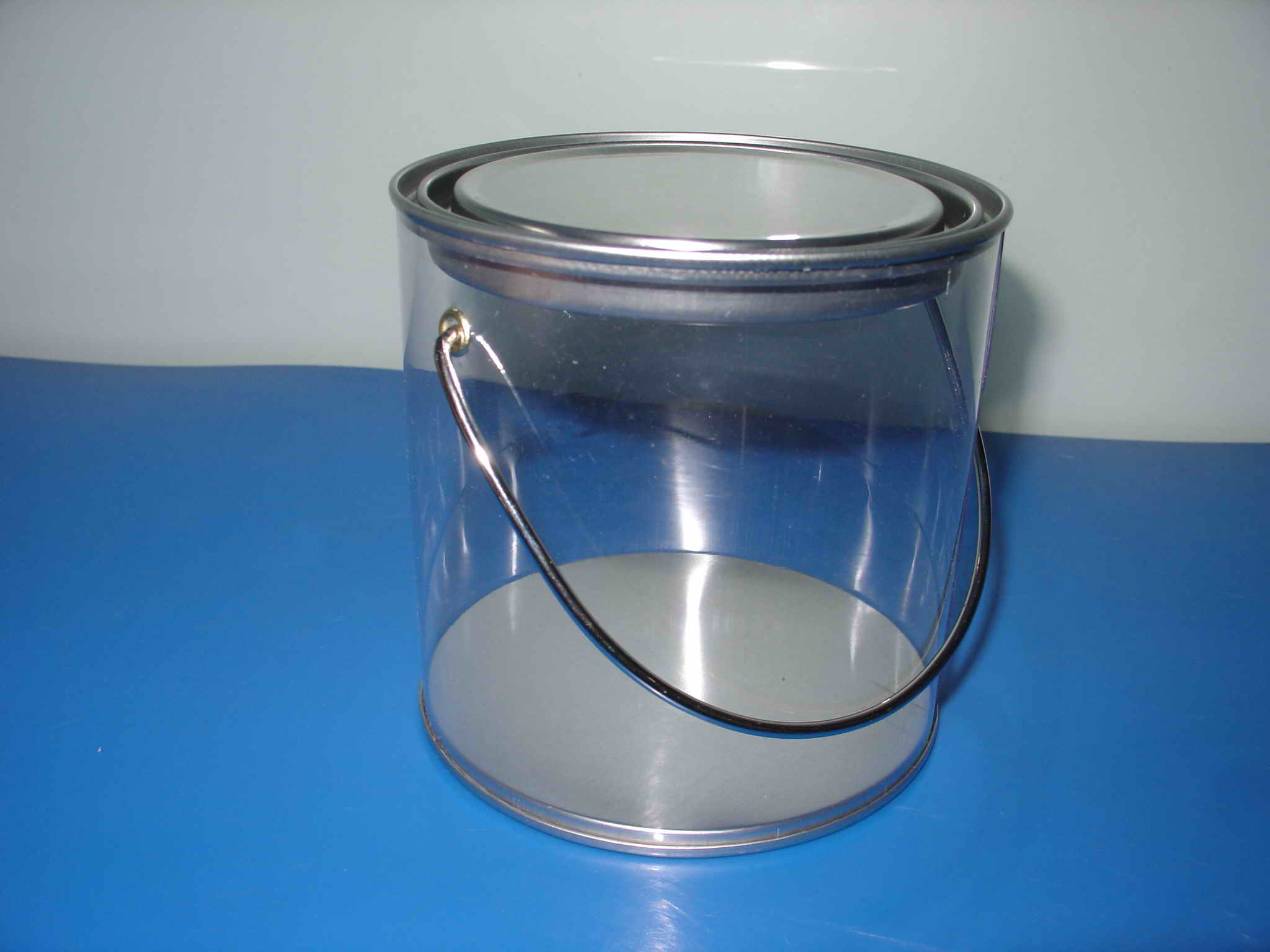 Clear Plastic Gallon Paint Cans